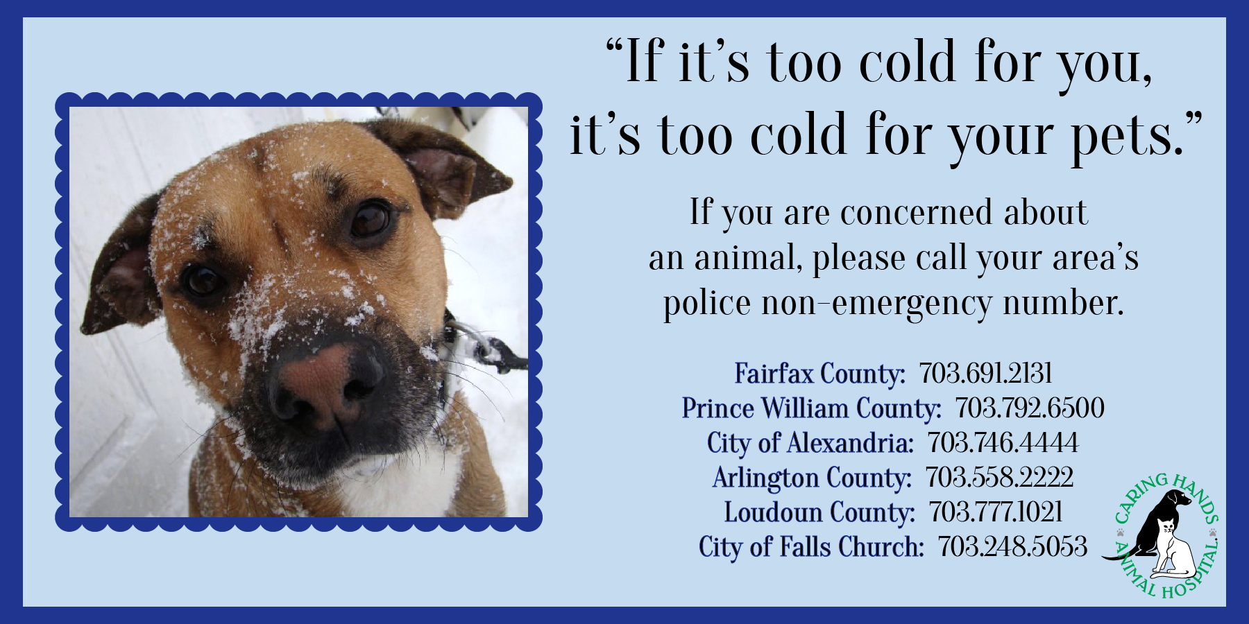 pw county press release protect your pet during cold