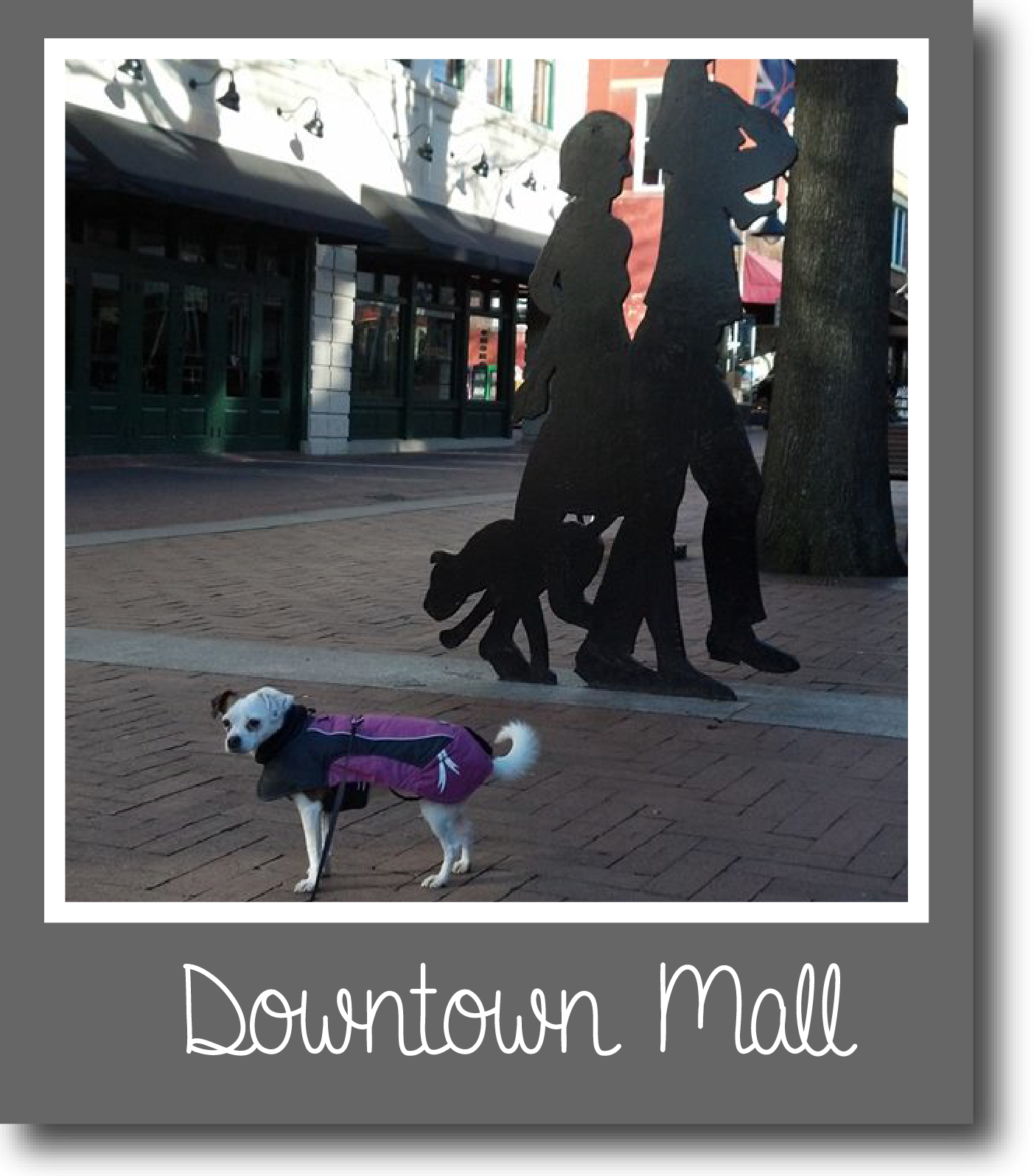 Tilly-DowntownMall-01