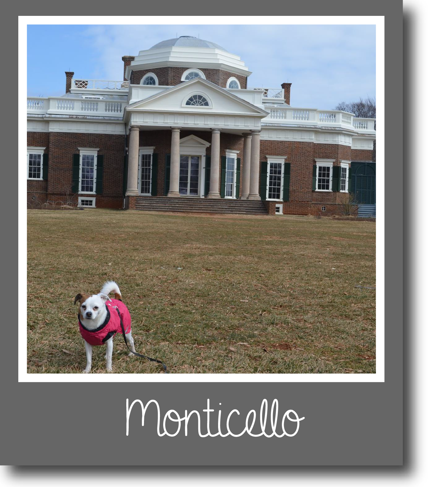 Tilly-Monticello-01