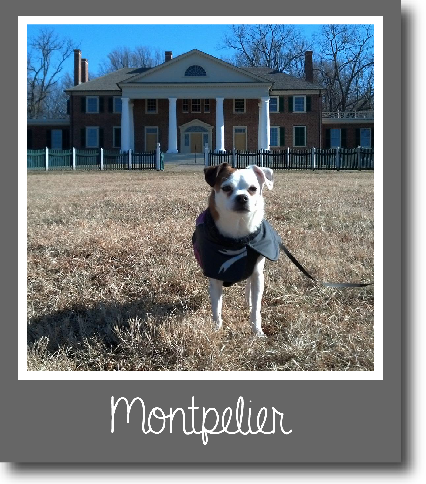 Tilly-Montpelier-01