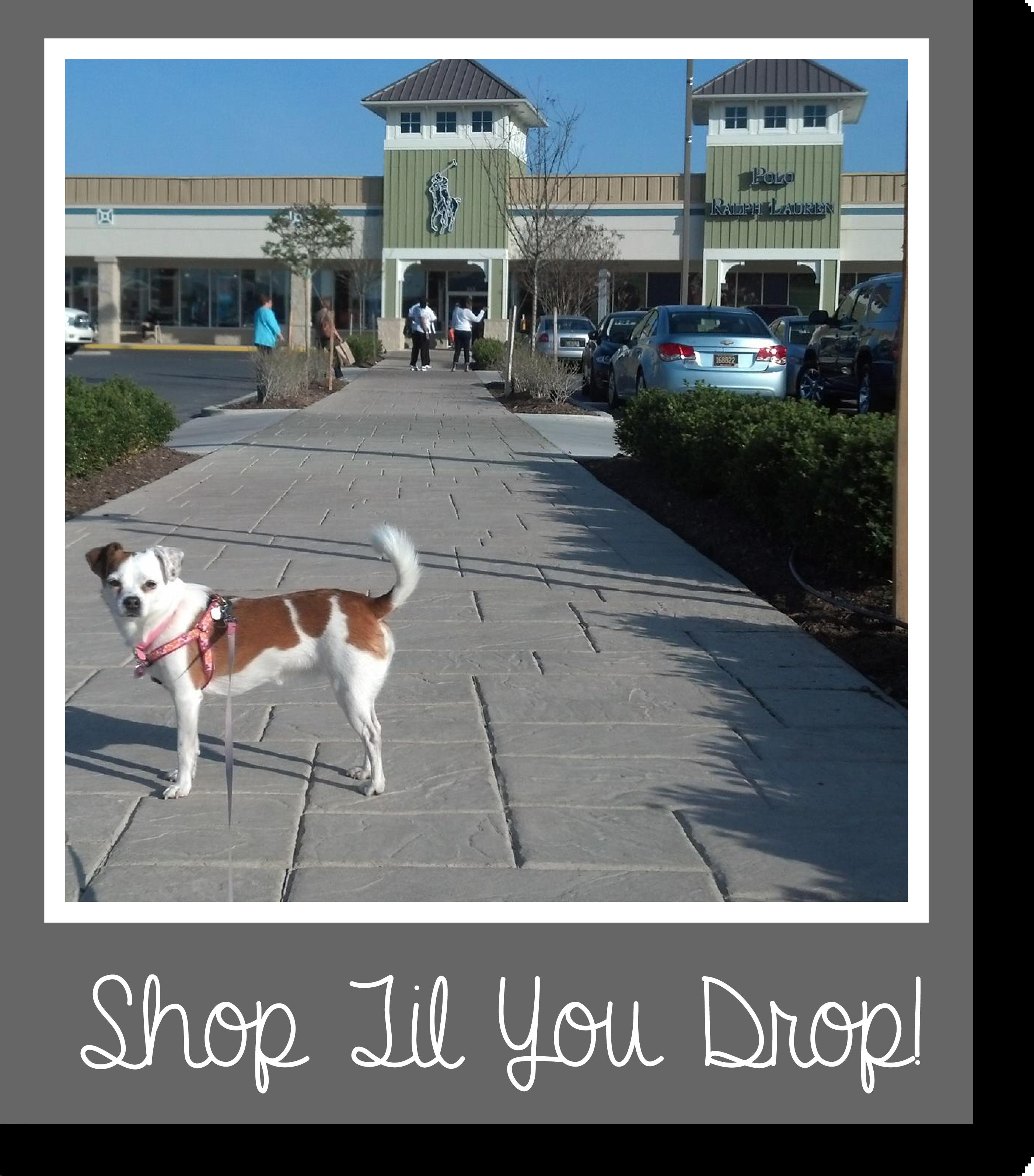 Tilly's Travels - Shop Til You Drop!